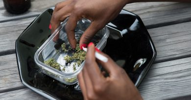 Recreational Marijuana : The Case for Putting Concerns of  The People Above Profits