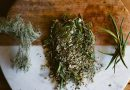 Herbs for WinterWellness