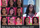 Buffalo Alumnae Chapter Of Delta Sigma Theta  Sorority Continues Legacy Of Youth Development