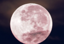 New Growth and Beginnings with April's Full Pink Moon in Scorpio Monday April 27